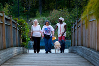 Three women walking across a bridge.  One using a guide dog and one using a white cane.  Women appear to be a medium distance away