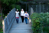 Three women walking across a bridge.  One using a guide dog and one using a white cane.  Women are farther away compared to the previous image. Taken from a high angle.