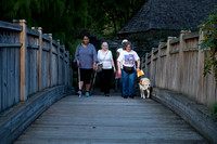 Four women walking across a bridge.  One using a guide dog, one using a white cane and one using a cane for walking.  Different from previous picture - women are farther away.